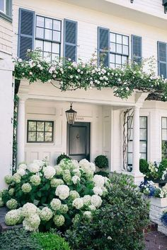 traditional white exterior with arbor, white climbing roses, and hydrangea, black shutters Hydrangea Landscaping, Hydrangea Garden, Farmhouse Landscaping, Front Yard Landscaping, Flowers Garden, Landscaping Ideas, Mulch Landscaping, Garden Plants, Windows