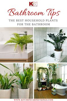 Plants are a gorgeous addition to your home, but you don't have to limit yourself to only keeping houseplants in the main area of your living space.