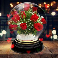Dekoráció. Future House, Snow Globes, Dandelion, Cool Designs, Table Decorations, Cool Stuff, Glass, Flowers, Beautiful