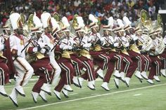 """The """"Marching Wildcats"""" of Bethune-Cookman University"""