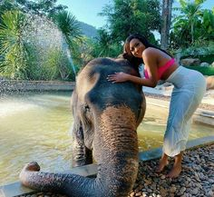 Pink Bikini, Travel And Tourism, Elephant, Romance, Places, Rocks, Animals, Beauty, Animales