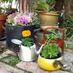 101 unusual upcycling ideas with old kitchen appliances - Alles für den Garten Recycled Kitchen, Old Kitchen, Kitchen Items, Kitchen Utensils, Kitchen Stuff, Kitchen Appliances, Succulents In Containers, Container Plants, Container Gardening