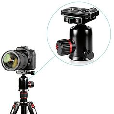 Neewer Professional Aluminum Alloy 360 Degree Rotating Panoramic Ball Head with 14 Quick Release Plate and Bubble LevelLoad Capacity 8kg176lbsfor TripodMonopodSliderDSLR CameraCamcorder -- Visit the image link more details-affiliate link.