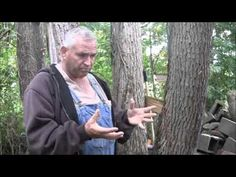 How to Get Rid of Poison Ivy - YouTube