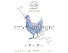 la Poule Bleue Amor Milagre Art and Stationery amormilagre.com french blue hen chicken