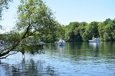 Every February, Werder (an der Havel) pops-up into the day travel agenda for its famous cherry blossom festival where local wines made of a. I Fall In Love, Falling In Love, Pop Up, River, Explore, Outdoor, Outdoors, Popup, Outdoor Games