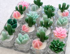 Tealight succulent and cactus candles Cactus Candles, Cute Candles, Diy Candles, Tea Light Candles, Scented Candles, Tea Lights, Ideas Candles, Cactus Craft, Cactus Decor