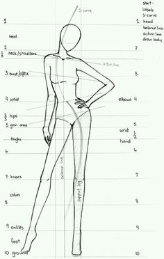 Fashion body portions.