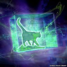 Schrodinger's cat - illustration