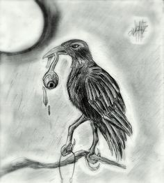 a crow with my life