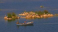 Boat Safari at Panna Enjoy the carefree Boar Ride on the mesmerising river Ken.