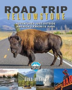 Road Trip Yellowstone: Adventures Just Outside America's ... https://www.amazon.com/dp/1493030302/ref=cm_sw_r_pi_dp_U_x_LvItBbD6ZXPFD