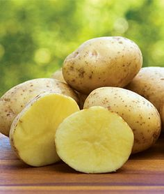 Yukon Gold Potato Seeds and Plants, Vegetable Gardening at Burpee.com