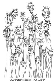 Poppy Head Hand Drawn Picture Sketch for Anti Stress Adult in poppy flower drawing Poppy head Hand drawn picture Sketch for anti stress adult Doodle Patterns, Zentangle Patterns, Zentangles, Doodle Drawings, Doodle Art, Doodle Frames, Colouring Pages, Coloring Books, Adult Coloring