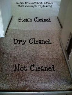 Our Professional Carpet Cleaners Increases The Longevity And Lifespan Of Your Carpets Deluxe Cleaning Melbourne As Name Suggests Provide Highest