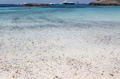 medusas playa formentera