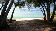2913 Avenue E - Anna Maria Island - Holmes Beach  http://www.islandreal.com/bre/properties/holmes-beach-2913-n-avenue-e-4/