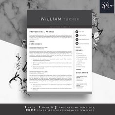 Buy One Get One FREE Professional Resume Template Resume