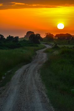 Uganda is truly one of the most beautiful places on earth I have heard. Now I need to see it for myself :)