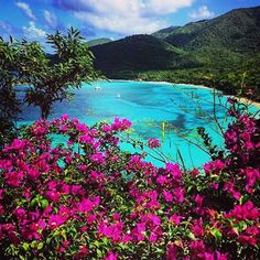 Visit St. John to see our beautiful beaches in person! Visit caneelbay.com to book