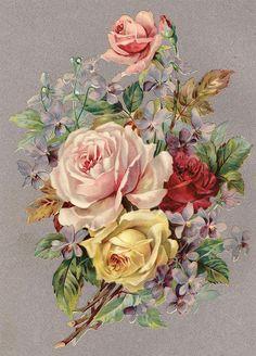 Adoro cada rosa que recibi de ti