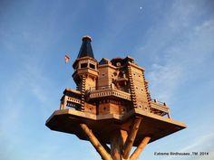 Extreme Birdhouses -John Looser