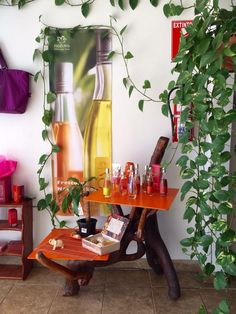 Herbalife, Holland, Boutique, Furniture, Ideas, Home Decor, Certificate Of Deposit, Products, Stuff Stuff