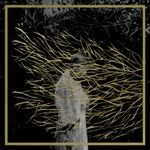 Forest Swords - Engravings (The Top 25 Album Covers of 2013   Pitchfork)