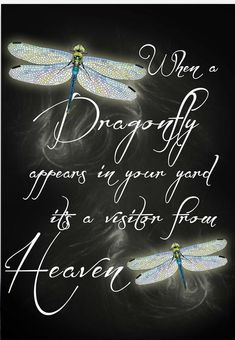 Tattoo quotes love memories grief 18 ideas for 2019 - Memory Tattoo Dragonfly Quotes, Dragonfly Art, Dragonfly Tattoo, Dragonfly Necklace, Dragonfly Images, Dragonfly Painting, Butterfly Quotes, Great Quotes, Inspirational Quotes
