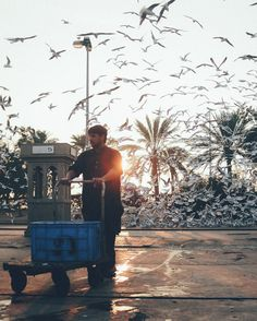Dubai's fishing trade has existed since the earliest days of the emirate – long before the likes of the Burj Khalifa and Palm Jumeirah were even ideas. Nowhere is it more evident than at the Deira Fish Market in the historic heart of Dubai.