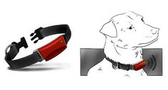 """GPS dog collar....Luke should probably have one of these when he goes """"exploring"""""""