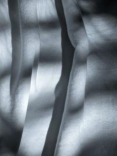 Cotton & Viscose Tessuti Cotton Viscose
