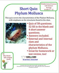 Phylum Mollusca Quiz / Homework. This is a document on the phylum Mollusca that can be used as a quiz, as a homework assignment, or as a review for your unit test.. It consists of 53 fill in the blank questions and 4 short answer questions.