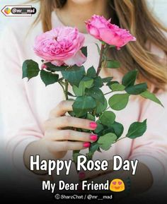 Valentine Special, My Dear Friend, Happy Day, Festivals, Rose, Pink, Concerts, Roses, Festival Party