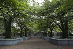 18 Places In Chicago To Go When You Need To Recharge & Feel Inspired the South Garden at the Art Institute of Chicago