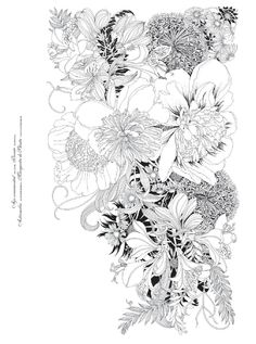 #ClippedOnIssuu from Floribunda. Flores para pintar / mtm editores