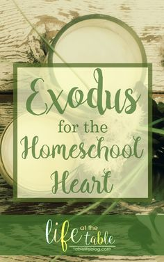 The book of Exodus has been showing up a lot for me recently. Between my personal Bible study, sermons I've heard, books I'm reading, and discussions with my husband, I can't seem to get Exodus and the children of Israel off of my mind. All of my time in Exodus[Read more]