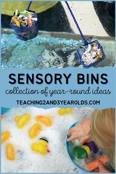 This collection of sensory table activities has ideas for every season of the year, plus those that can be enjoyed year round. Hands-on fun for toddlers and preschoolers! #sensory #table #finemotor #colors #shapes #holidays #seasons #water #classroom #toddler #preschool #age2 #age3 #teaching2and3yearolds Sensory Table, Sensory Bins, Sensory Play, Teaching Shapes, Teaching Colors, Frog Activities, Toddler Activities, Toddler Fun, Toddler Preschool