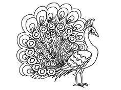 picture of a peacock female peacock coloring book pages embroidery patterns gift boxes paper dolls egg pictures of templates