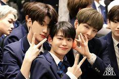 CHA JUNHO (차준호) Produce X 101