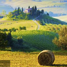 cestmoimomentsofinspiration:  Val d'Orcia, Italy | The perfect farmhouse by Francesco Riccardo IacominoVia 500px.com