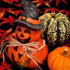 Halloween Songs Public Domain