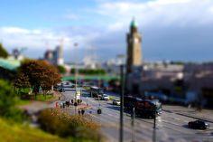Hamburg Miniature by Douglas Holder