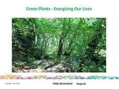 This resource is a short presentation about how Green Plants energize our lives…