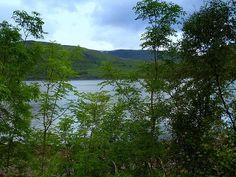 Spring at Loch Ness