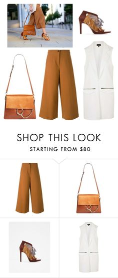 """Street Trends: Culottes"" by junglover ❤ liked on Polyvore featuring VIVETTA, Chloé, Zara and Topshop"
