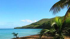Plage de Grande Anse Deshaies Guadeloupe Plus Belle, Beaches, Beautiful Places, Paradise, Photos, Island, Holidays, Water, Travel