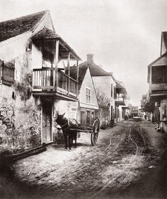 Charlotte Street St. Augustine Florida with donkey and cart at left 1886