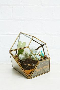 Urban Grow Diamond Terrarium Planter in Gold