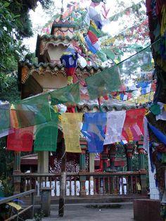#magiaswiat #darjeeling #podróż #wakacje #zwiedzanie # indie #blog #świątynia #mahakala # Indie, Darjeeling, Times Square, Blog, Painting, Travel, Viajes, Darjeeling Tea, Painting Art